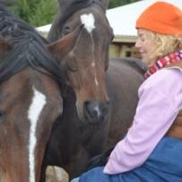 Horse Healers… Heaven On Earth