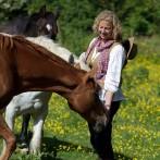 Soul of Horse
